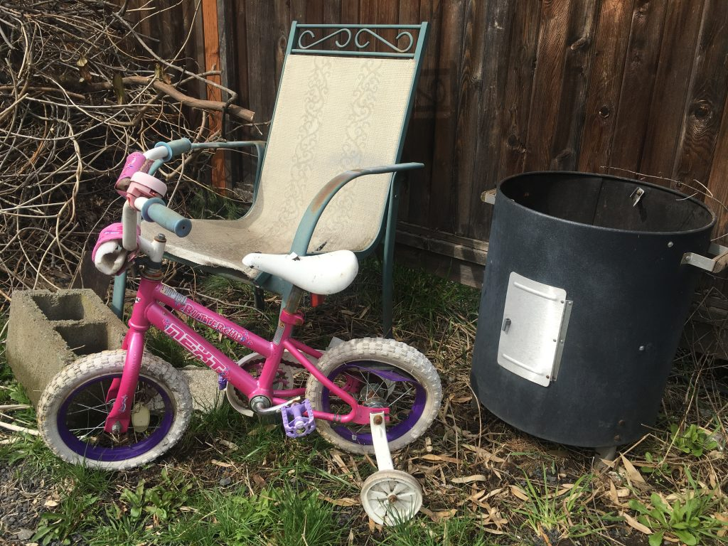 Butterclip Princess Bike with training wheels, lightly run over plus extras